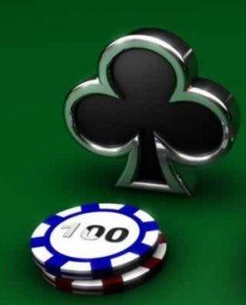 Texas Poker Pro 2.5 [2010, игры]