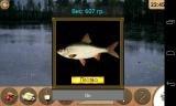 Реальная рыбалка [v 1.4.2.46] (2014) Android